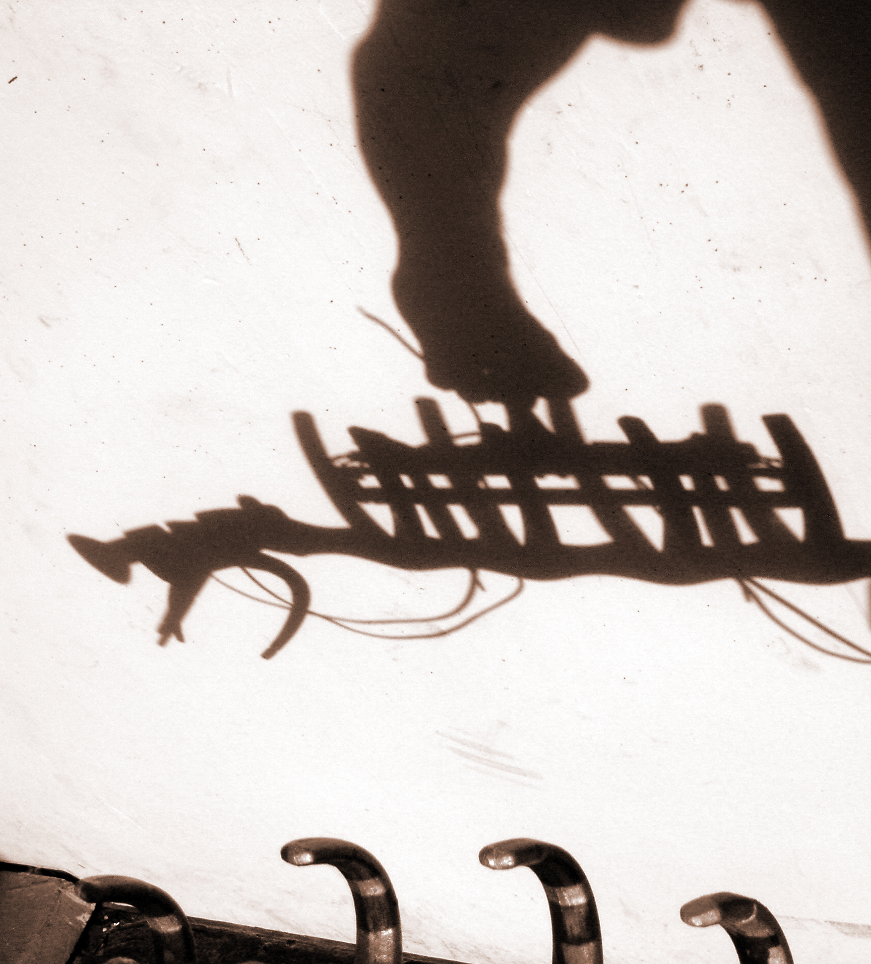 Plesiosaur light fixture shadows (2005)